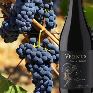 Vernus Pinot Noir